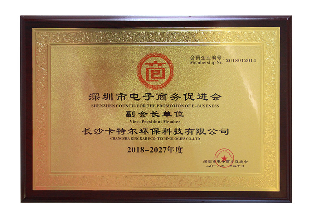 Shenzhen council for the promotion of E-Buseness Vlce-President Member