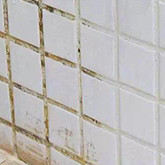 Traditional tile grout will Get mildewed