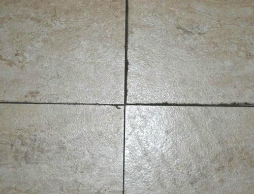 Why the cement-based grout get mildew and black easily?